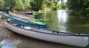 Canoe the Duck River