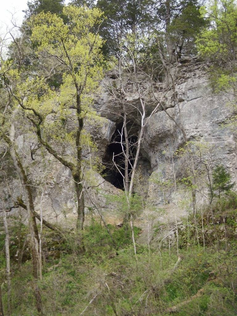 scenic Cave on the Duck River